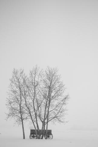 Blog post-9